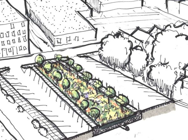 Sketch of a street showing a community planting area