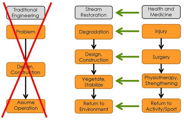 Chart outlining the alignment of stream restoration with medicine.