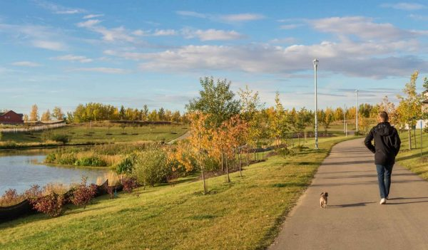 Person walking with their dog along a walking path next to a pond.