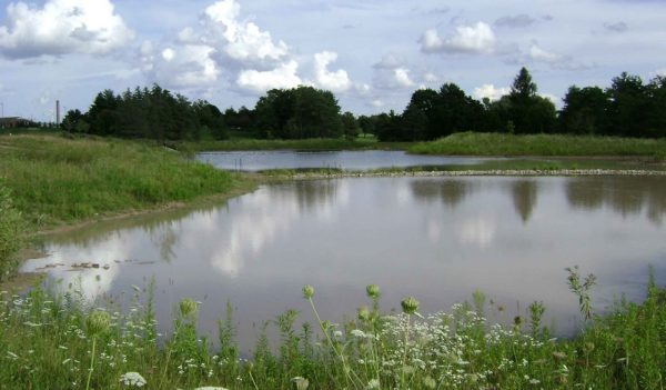 View looking over a stormwater management pond.