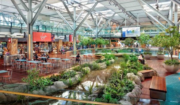 Airport retail area with natural garden and water feature