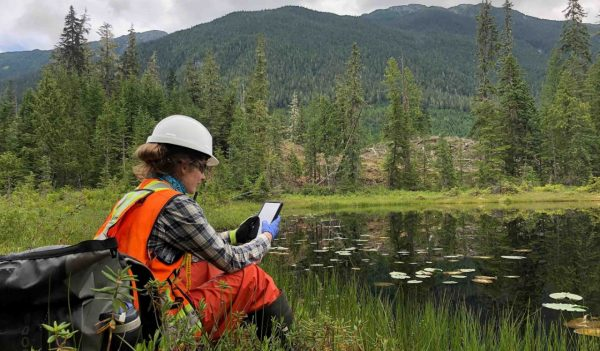 Woman on tablet outside analyzing environmental samples